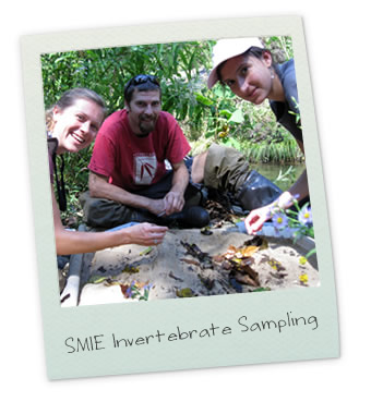 SMIE Invertebrate Sampling